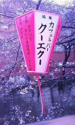 目黒川桜祭(^o^)/